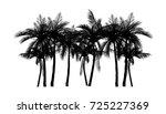 vector palm tree silhouette...   Shutterstock .eps vector #725227369