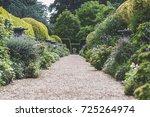 traditional english garden path. | Shutterstock . vector #725264974