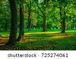 warm and sunny autumn morning... | Shutterstock . vector #725274061