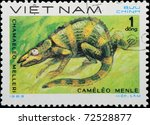 VIETNAM - CIRCA 1983: A stamp printed in Vietnam shows animal reptile chameleon, circa 1983 - stock photo