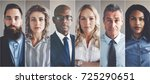 Stock photo collage of portraits of an ethnically diverse and mixed age group of focused business professionals 725290651