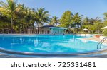 Coconut Palm Tree Swimming Poo...