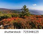 luzny  sumava. lusen  bavaria...   Shutterstock . vector #725348125