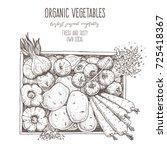 harvest of vegetables in the... | Shutterstock .eps vector #725418367