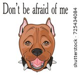 cute snout ofpitbull with black ... | Shutterstock . vector #725434084