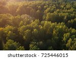 Aerial View Of Wild Park In...