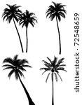 palm tree silhouette set on...   Shutterstock . vector #72548659