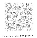 autumn pattern. harvest. fruit  ... | Shutterstock .eps vector #725569315