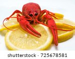 juicy red crawfish with large... | Shutterstock . vector #725678581
