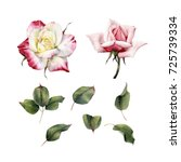 roses and leaves  watercolor ... | Shutterstock . vector #725739334