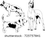 set of vector drawings on the... | Shutterstock .eps vector #725757841