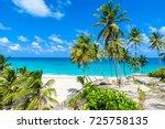 bottom bay  barbados   paradise ... | Shutterstock . vector #725758135