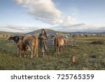 Small photo of mongolian nomad woman milking a cow
