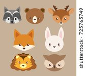cute woodland animal character... | Shutterstock .eps vector #725765749