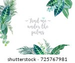 tropical borders arranged from... | Shutterstock .eps vector #725767981