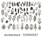 big set of flowers and herbs.... | Shutterstock .eps vector #725965537
