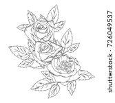 sketch rose flower .pencil... | Shutterstock .eps vector #726049537