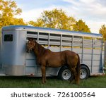 horse and trailer | Shutterstock . vector #726100564