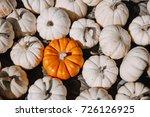 small orange pumpkin among... | Shutterstock . vector #726126925