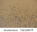 shell and pebble stone for...   Shutterstock . vector #726128479