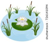 white water lily in pond...   Shutterstock .eps vector #726141094