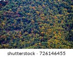 trees with red  yellow and... | Shutterstock . vector #726146455