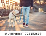 morning walk with dog. young... | Shutterstock . vector #726153619