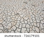 footprints of an animal in dry... | Shutterstock . vector #726179101