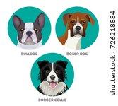 short hair bulldog  boxer dog...   Shutterstock .eps vector #726218884
