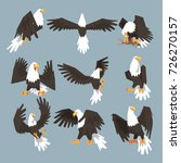 bald eagle an image set hunting ... | Shutterstock .eps vector #726270157