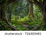 asian jungle | Shutterstock . vector #726303481