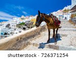 Donkey Taxis In Santorini ...