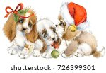 dog year greeting card. cute... | Shutterstock . vector #726399301
