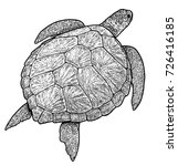 green sea turtle illustration ... | Shutterstock .eps vector #726416185
