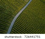 aerial view over vineyard... | Shutterstock . vector #726441751