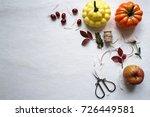 autumn mood yellow leaves ... | Shutterstock . vector #726449581