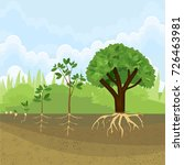 sequential stages of growth of... | Shutterstock .eps vector #726463981