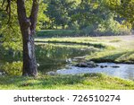 View Of Oak Tree By Pond On A...