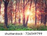 colorful autumn sunrise in... | Shutterstock . vector #726549799