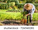 farmer holding a carrots from... | Shutterstock . vector #726560281
