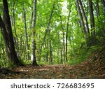 road in forest | Shutterstock . vector #726683695
