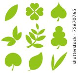 Set Od Various Tree Leaves....