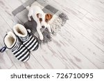 puppy on a rug. dog at home | Shutterstock . vector #726710095