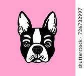 cute french bulldog face vector | Shutterstock .eps vector #726732997