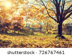 colorful tree and blue sky in... | Shutterstock . vector #726767461