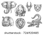 wild african animals sketch... | Shutterstock .eps vector #726920485
