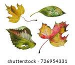 autumn leaves | Shutterstock . vector #726954331