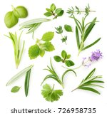 fresh spices and herbs isolated ... | Shutterstock . vector #726958735