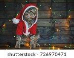 Striped cat in santa claus...