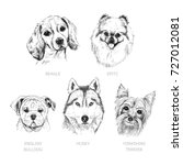 set of dogs. symbol of the year ... | Shutterstock .eps vector #727012081